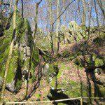 Felsenmeer, Höhle und Museum