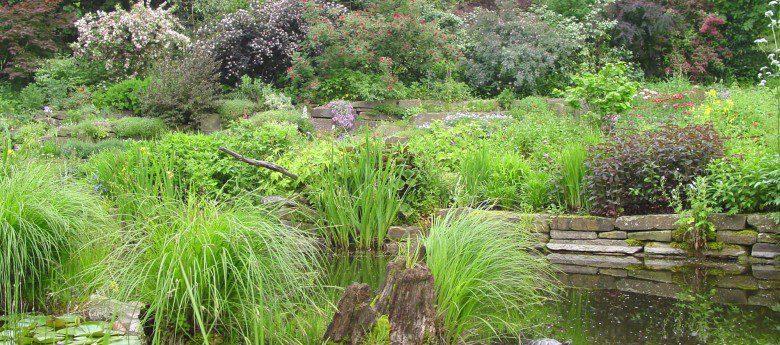 Garten und Genuss – Mit Olpe biologisch zur Gartenbesichtigung