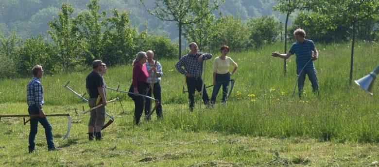 Mähen mit der Sense: Sensenverein Deutschland e.V. bietet Praxisseminar in Olpe