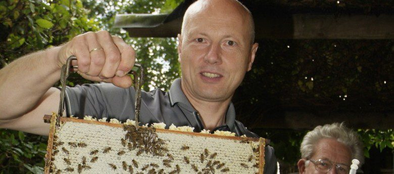 Insektenschutz: Der Wespenretter für das Sauerland