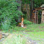 NaKuMe – NaturKunstMensch Naturpark & Skulpturenpark