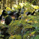 Natur- und Geopark Vulkaneifel