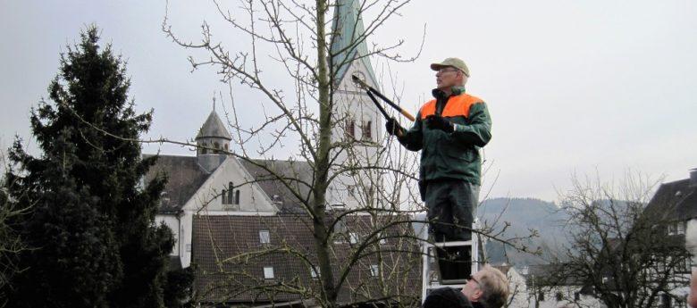 Obstbaumschnittkurs beim NABU Olpe