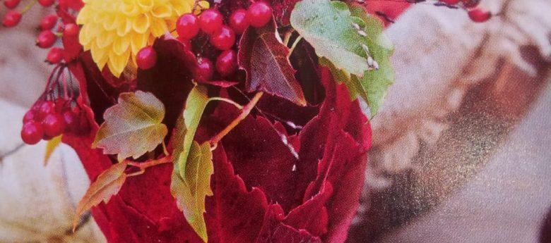 Mit Olpe biologisch auf Streifzug durch den Kräutergarten